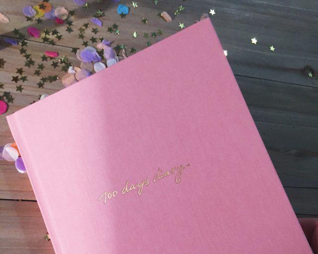 100 days diary